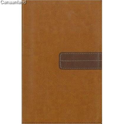 TNIV - Today's Devotional Bible, Tan/Brn