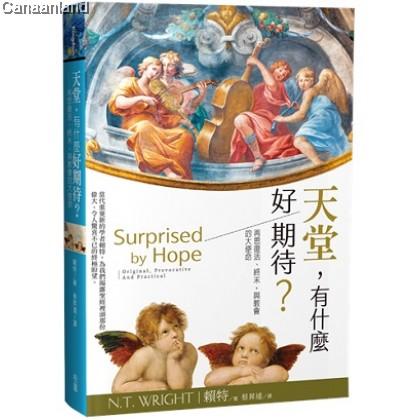 Surprised by hope : original, provocative and practical, Trad 天堂,有什麼好期待?: 再思復活、終末,與教會的大使命 (繁)